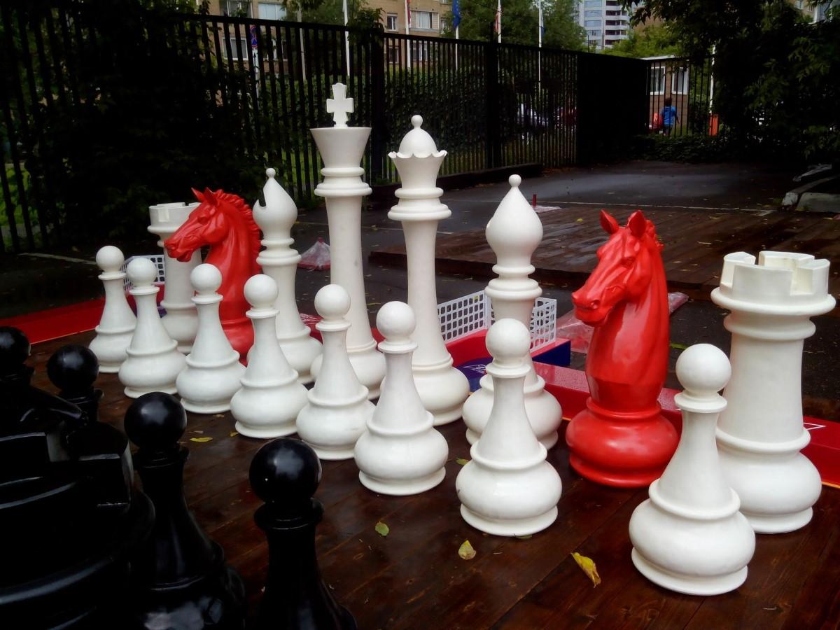 Шахматные ростовые фигуры | фото 6
