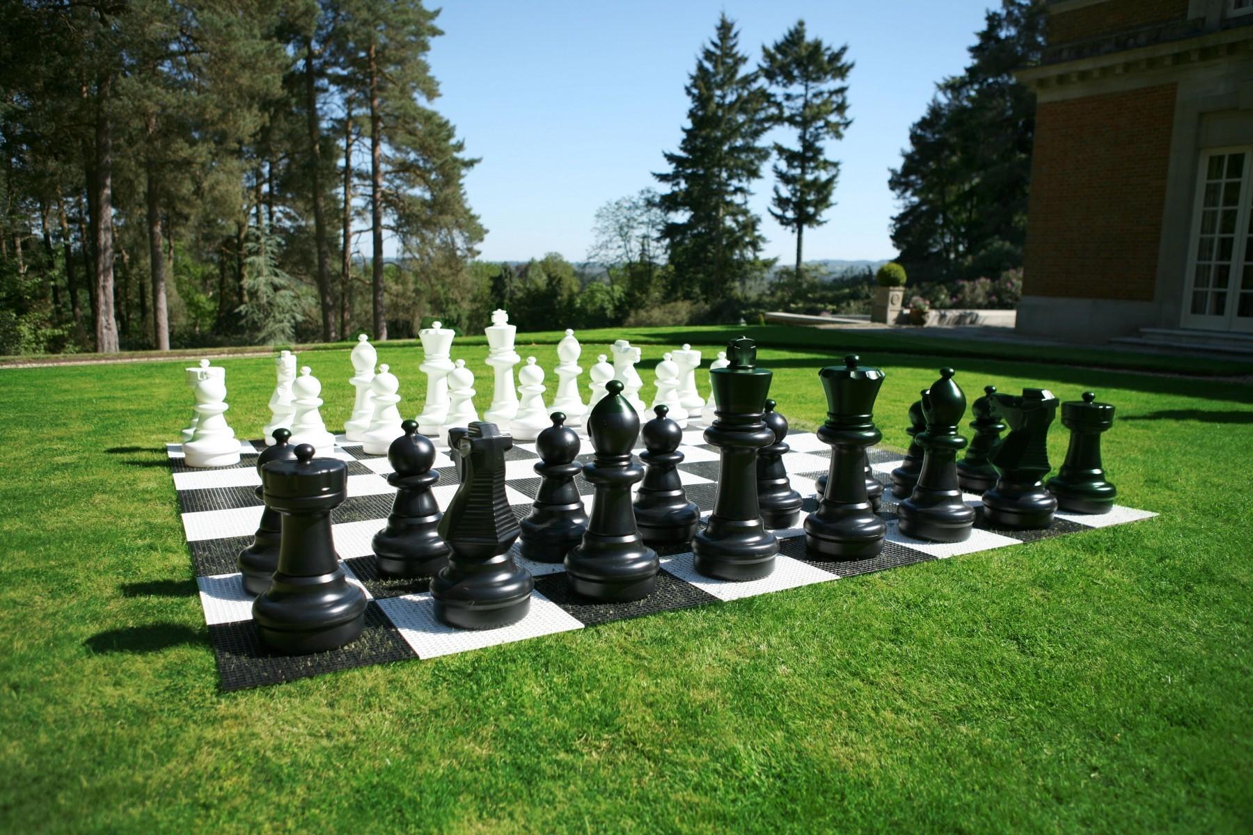 Шахматные ростовые фигуры | фото 5