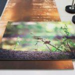 Широкоформатная печать на пенокартоне   фото 1
