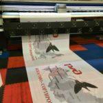Широкоформатная печать на ткани | фото 5