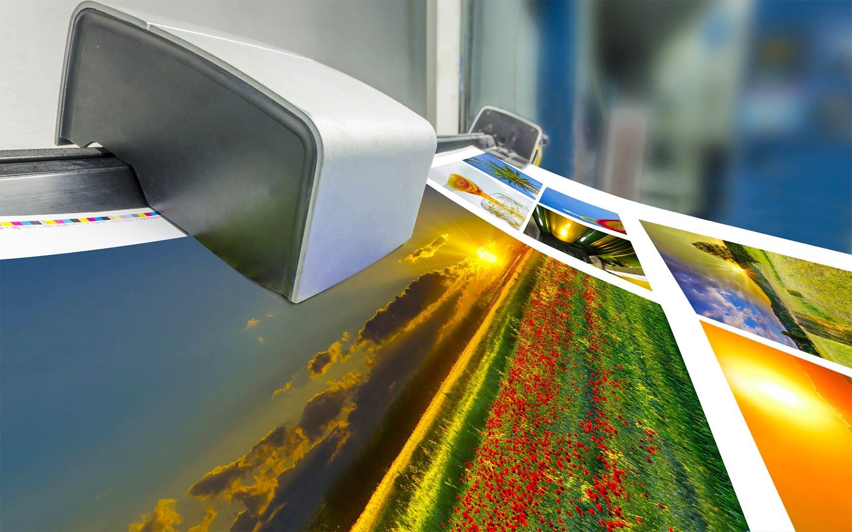 Широкоформатная печать рулонами | фото 8