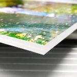 Интерьерная печать на ПВХ | фото 3